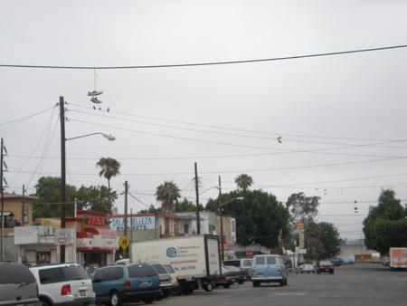 ティファナゲットーのストリート