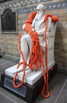 knit the city (ニット・ザ・シティー)